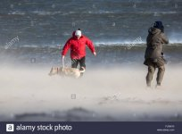 people-walking-a-dog-on-a-windy-beach-with-sand-blowing-whitley-bay-FJGN10.jpg