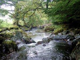 Beddgelert River - TG552107.jpg