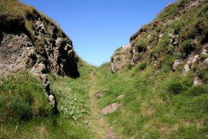 Cliff Path - 20070711_0236.jpg