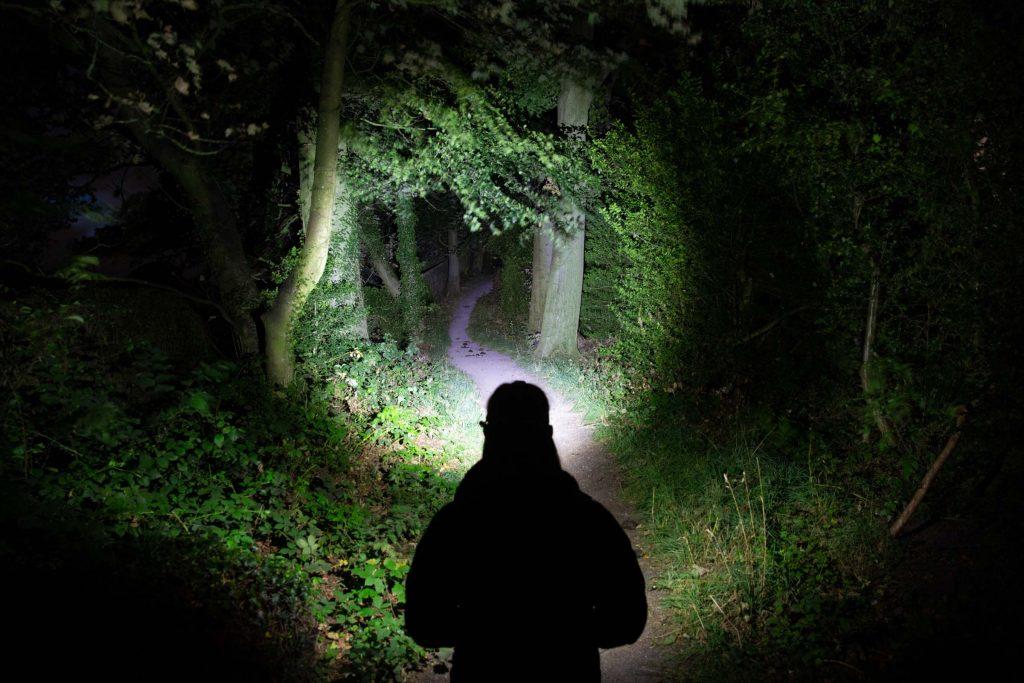 Alpkit Manta illuminating the woods